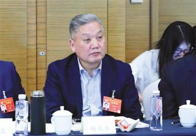 杨成长 全国政协委员、申万宏源证券研究所首席经济学家