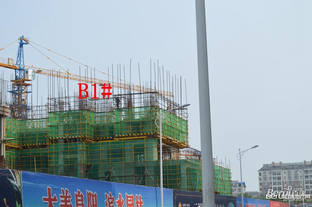 丽丰一品B1#号楼建至7层左右