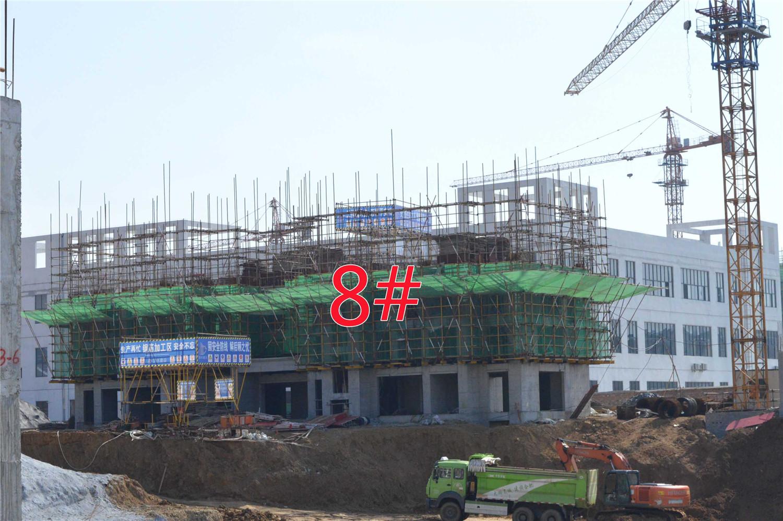 瑞阳公馆8#建至3层
