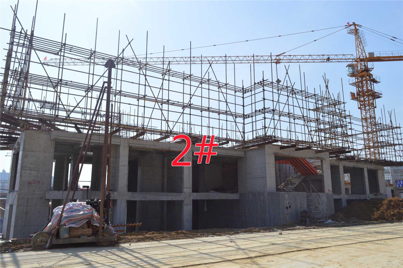 瑞阳公馆2#建至2层
