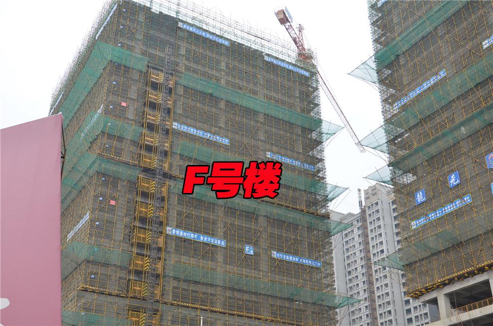 F#楼工程进度(2016.2.19)