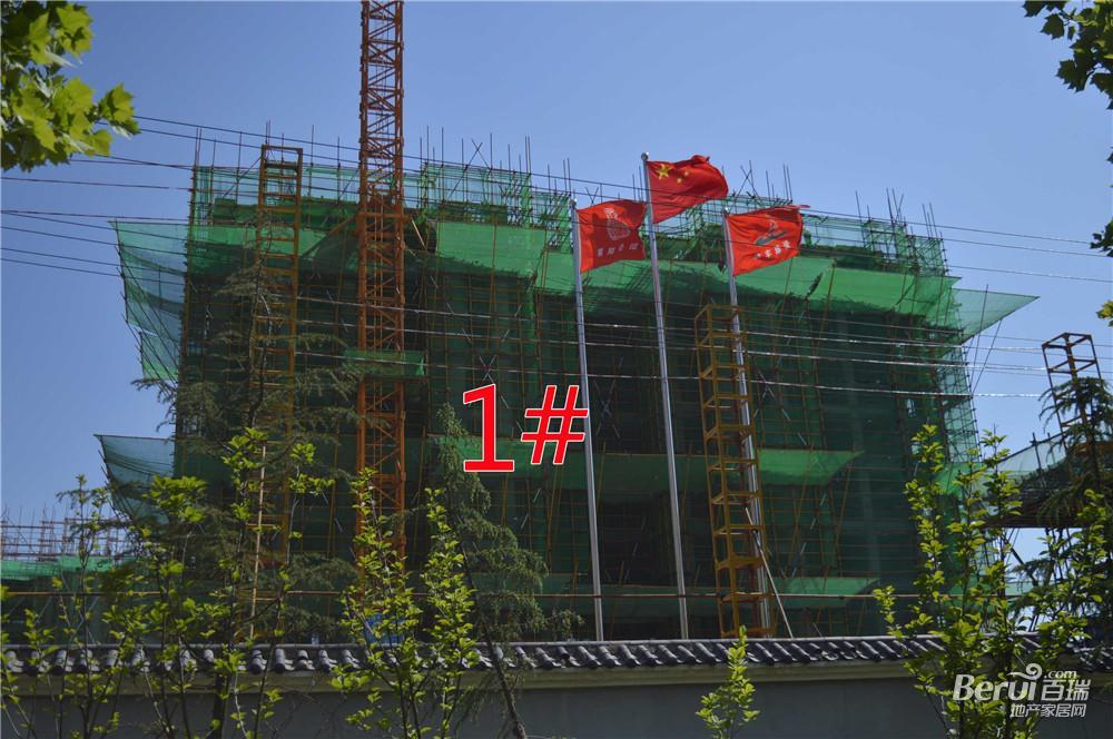 瑞阳公馆1#建至9层