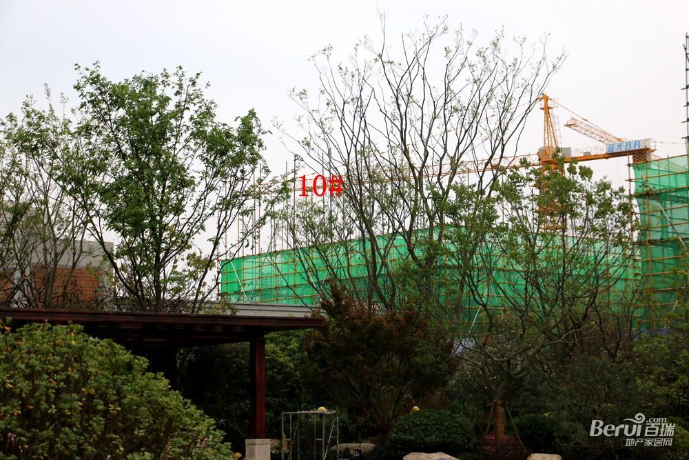 蓝光雍锦半岛10#建至1层