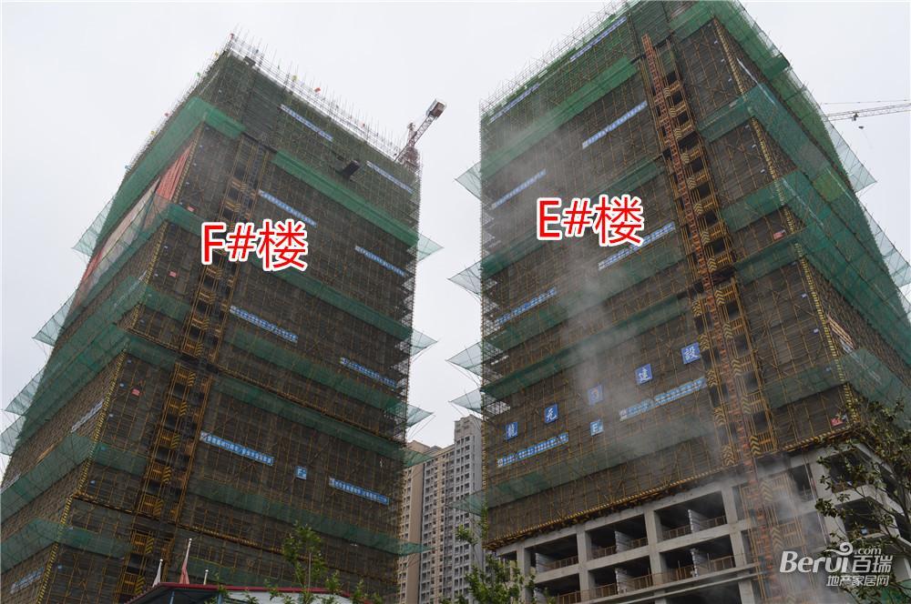 绿地中心E#F#楼最新工程进度