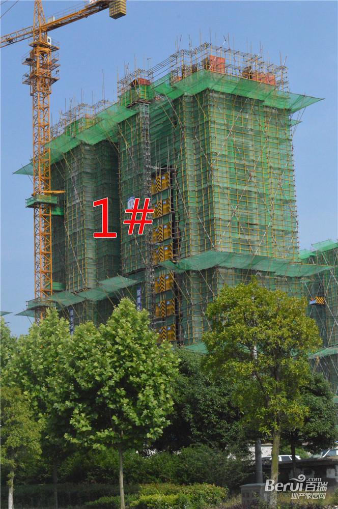 瑞阳公馆1#建至15层