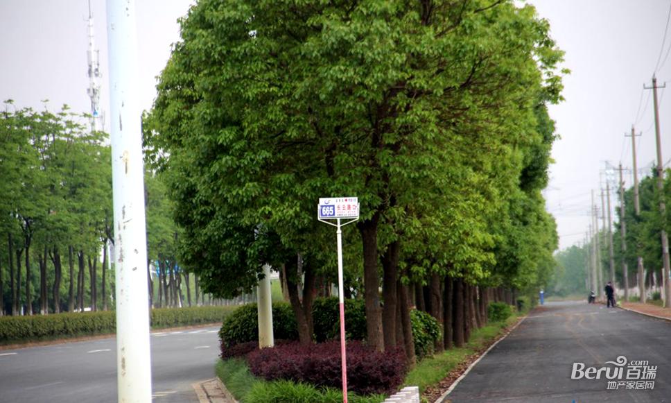蓝光雍锦半岛旁边公交站牌