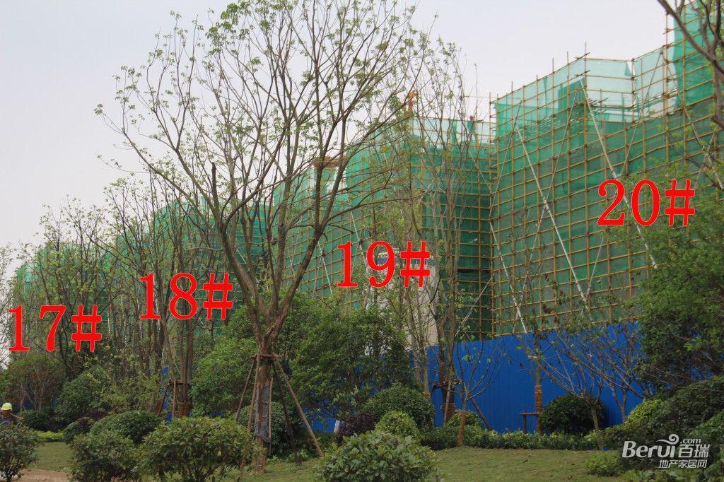 蓝光雍锦半岛17#-20#建至3层左右