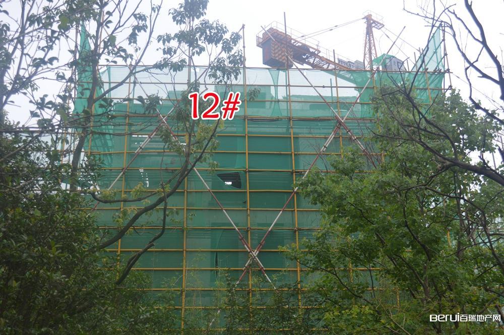 蓝光雍锦半岛12#即将建成