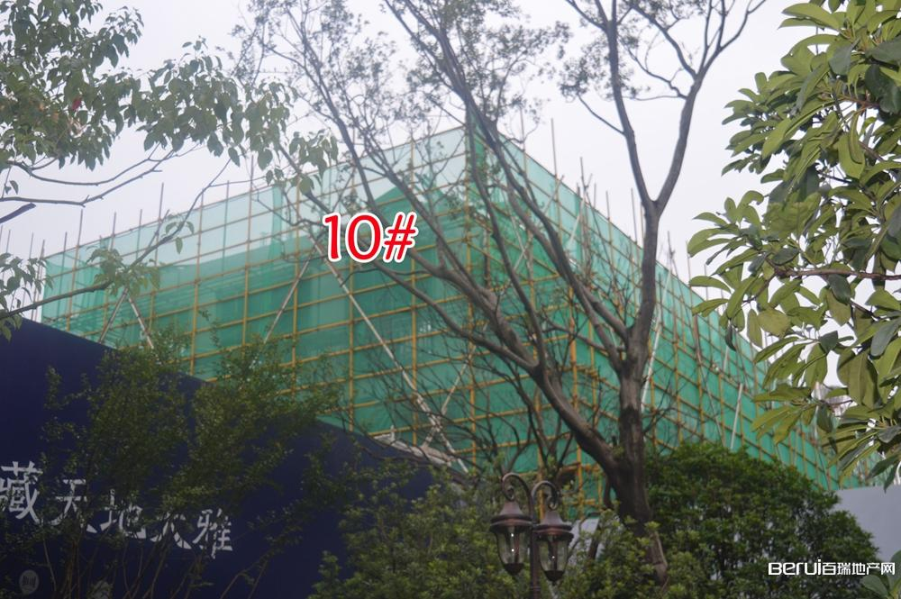 蓝光雍锦半岛10#即将建成