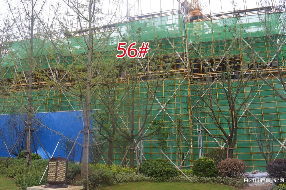 蓝光雍锦半岛56#大约建到4层