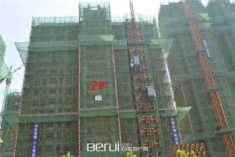 瑞阳公馆2#建至20层
