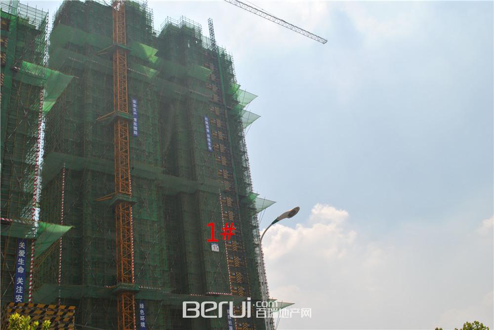 瑞阳公馆1#建至25层