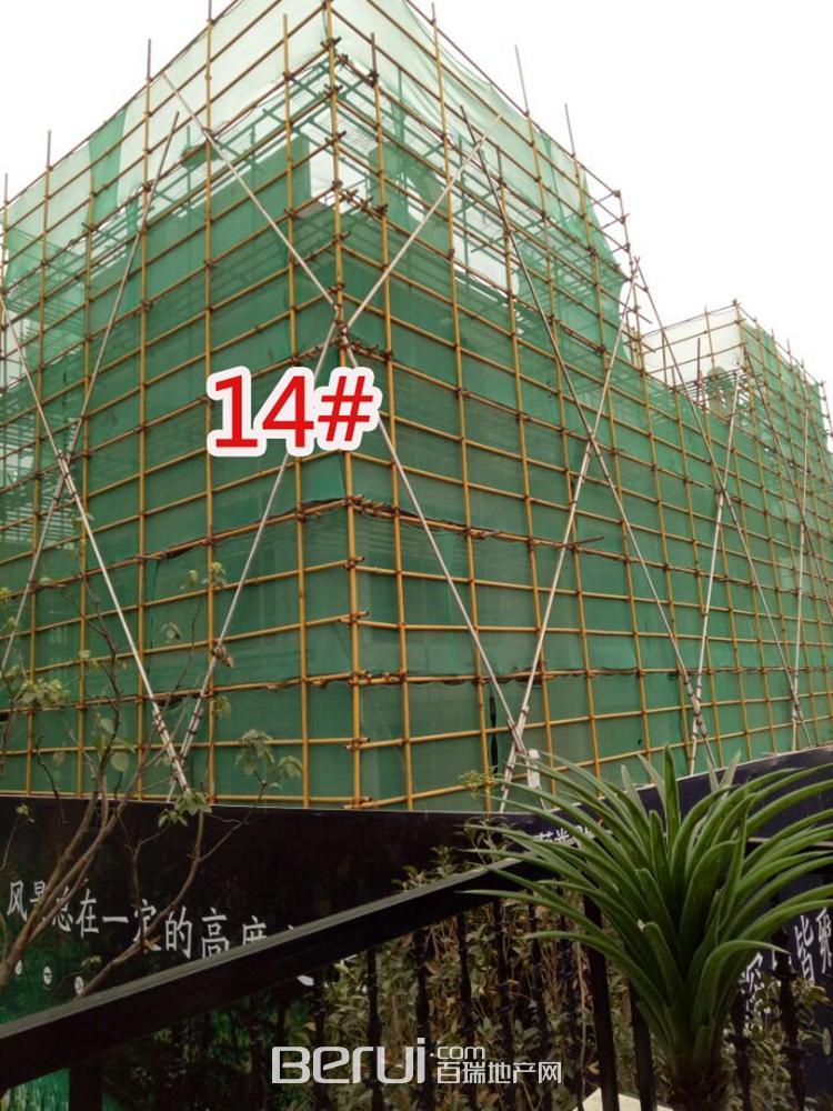 蓝光雍锦半岛14#即将建成