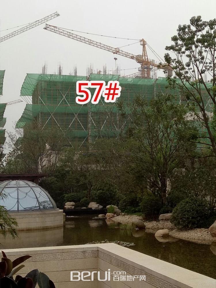 蓝光雍锦半岛57#建至大半