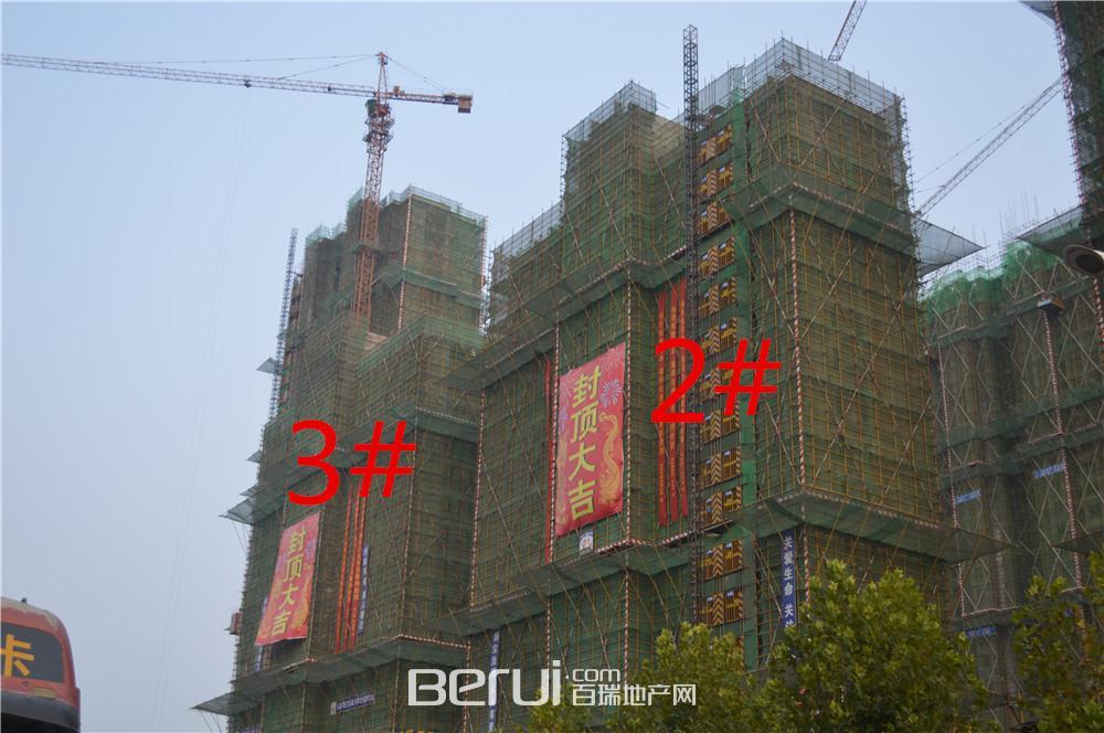 瑞阳公馆2#3#已封顶
