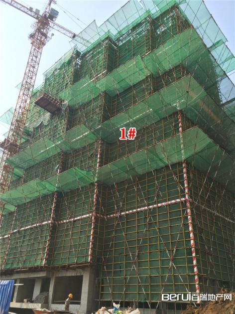 绿地御徽1#最新工程进度