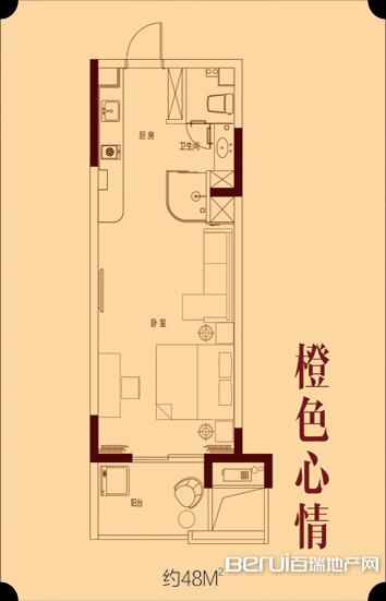 远洲玫瑰公馆B1橙色心情