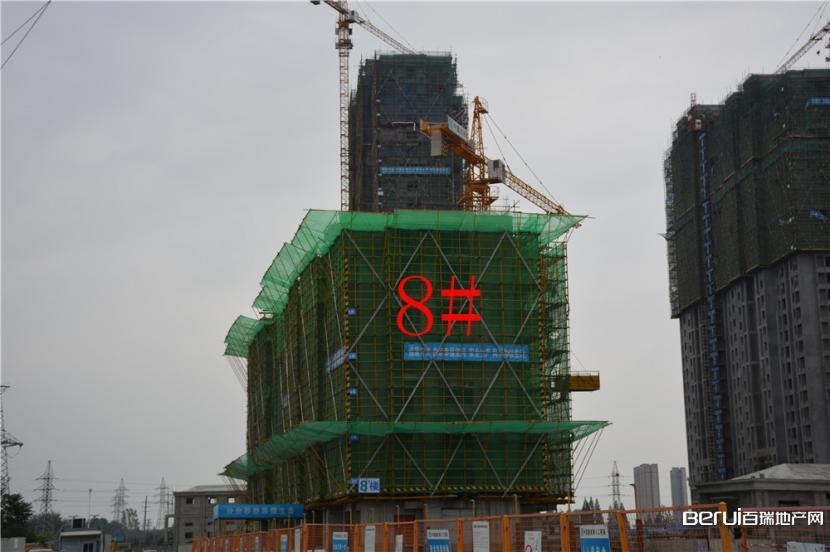新华城东郡 截至目前8# 建至8层