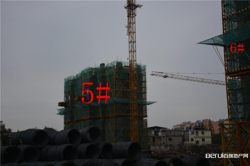 恒业华府5#7F封顶8F在建 6#8F封顶9F在建