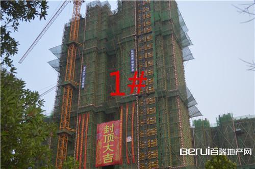 瑞阳公馆1#已封顶