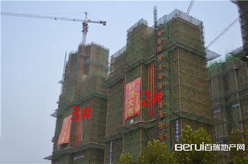 瑞阳公馆2#和3#已封顶