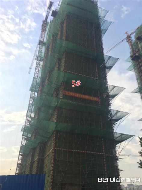 绿地御徽5#最新工程进度