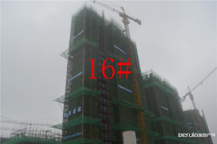 华盛南院16#建至十几层 9/9