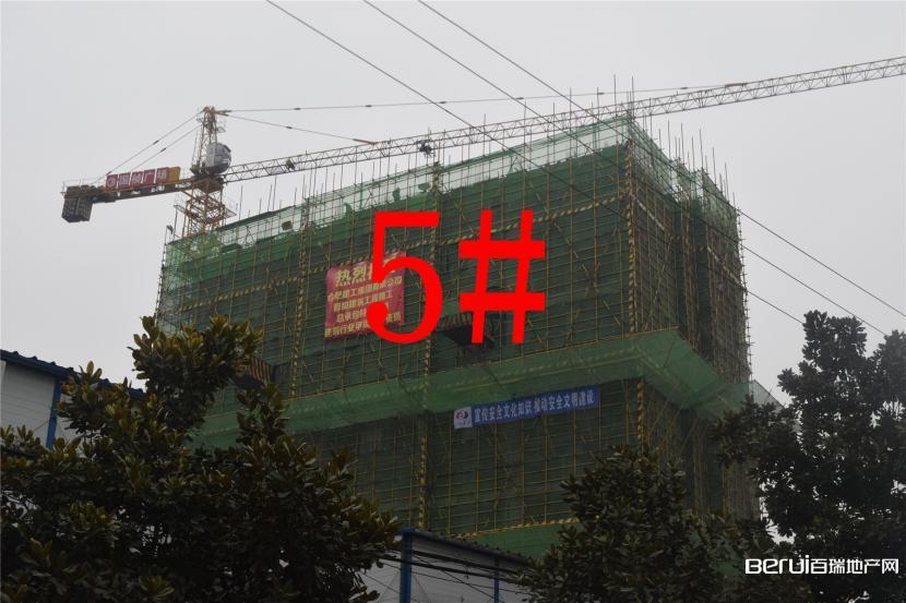 国祯广场5#建至7层 3/35
