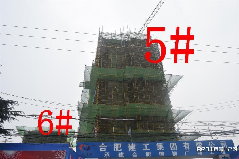 国祯广场5#、6#正在建设中 2/35