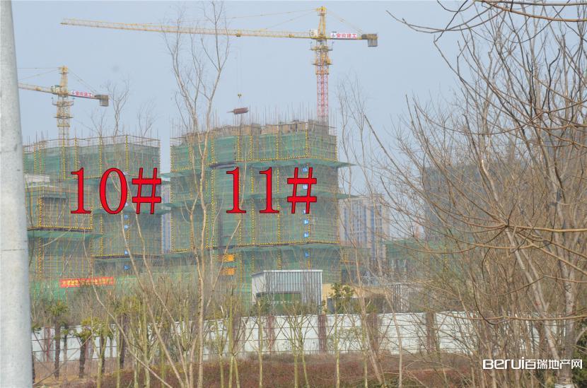 国贸天悦10#,11#约建12层