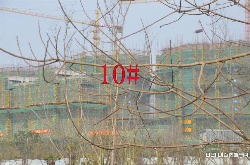 国贸天悦10#约建12层