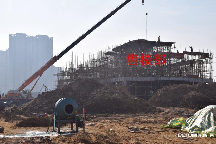同昇·玫瑰园工程现场