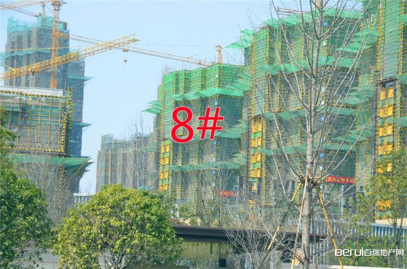 国贸天悦8#约建15层