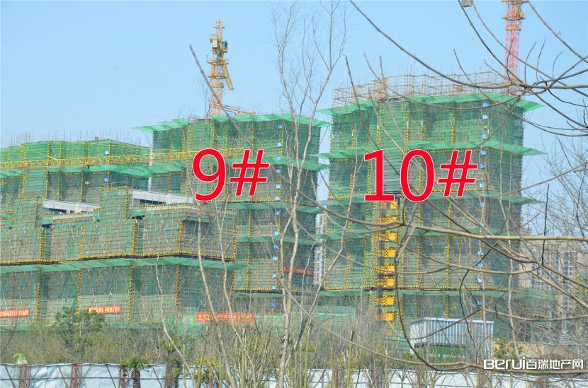 国贸天悦9#约建18层,10#约建20层