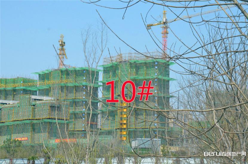 国贸天悦10#约建20层