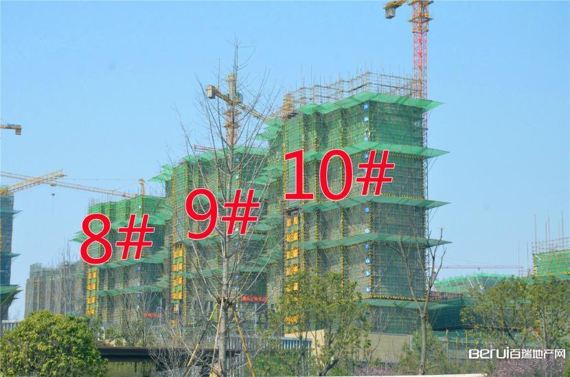 国贸天悦8#约建15层,9#约建18层,10#约建20层,