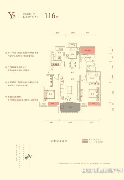华盛南院洋房建筑面积116㎡Y2户型图 6/25