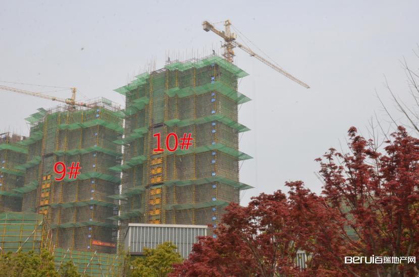 国贸天悦9#建至24层,10#建至25层