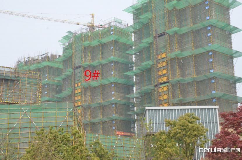 国贸天悦9#建至24层
