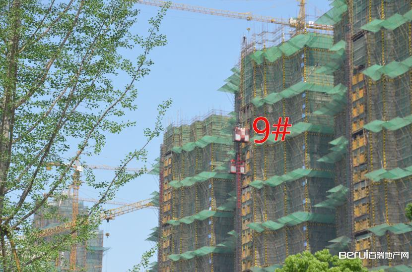 国贸天悦9#建至25层