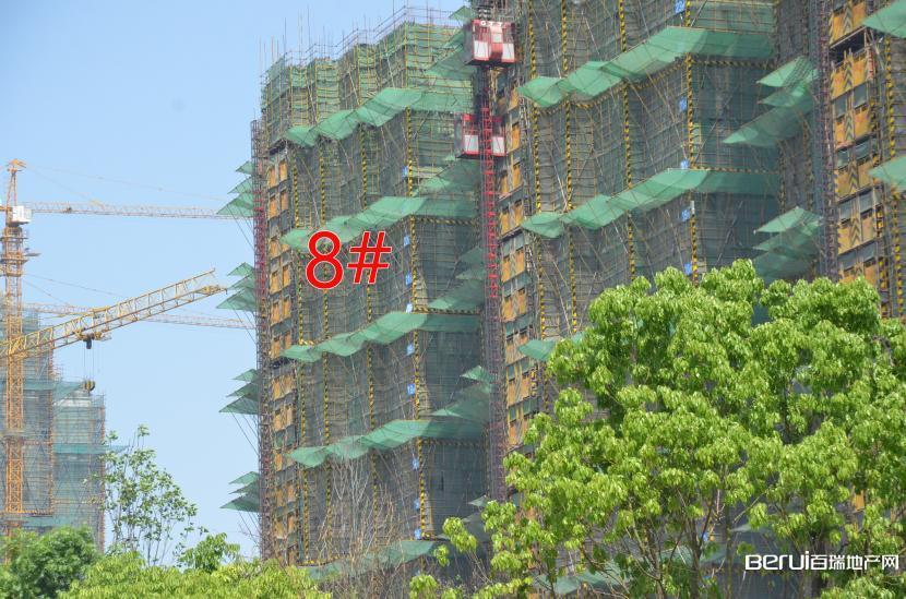 国贸天悦8#建至20层