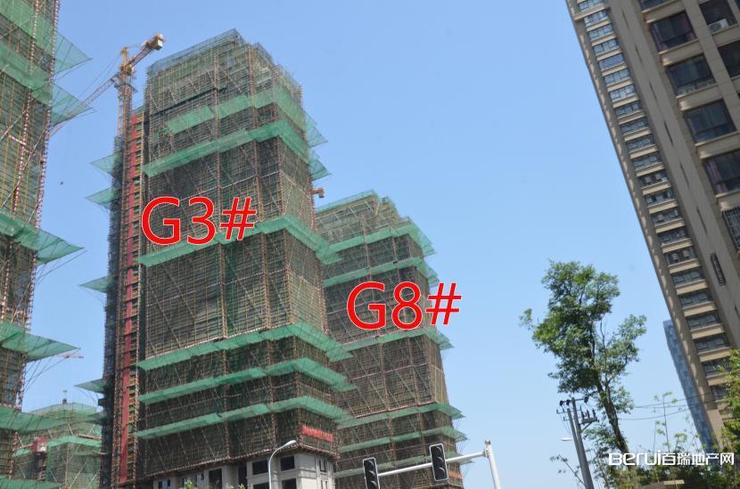 绿地御徽G3#、G8#封顶