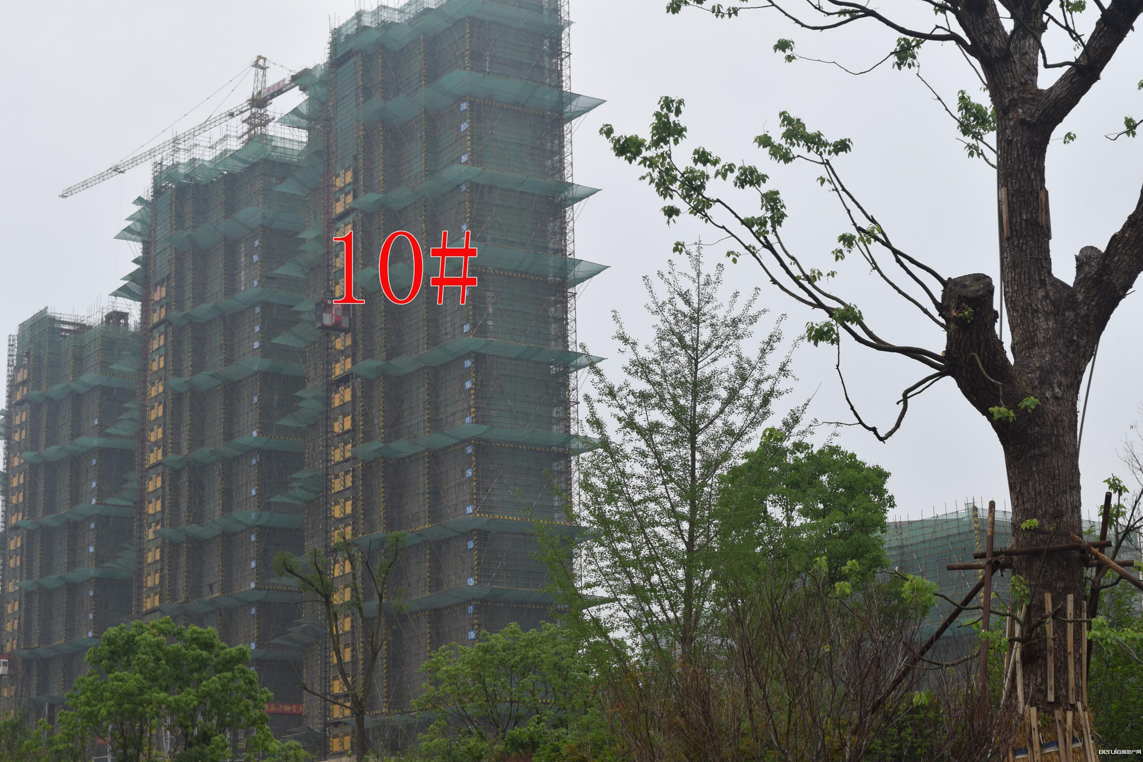 国贸天悦10#建约30层
