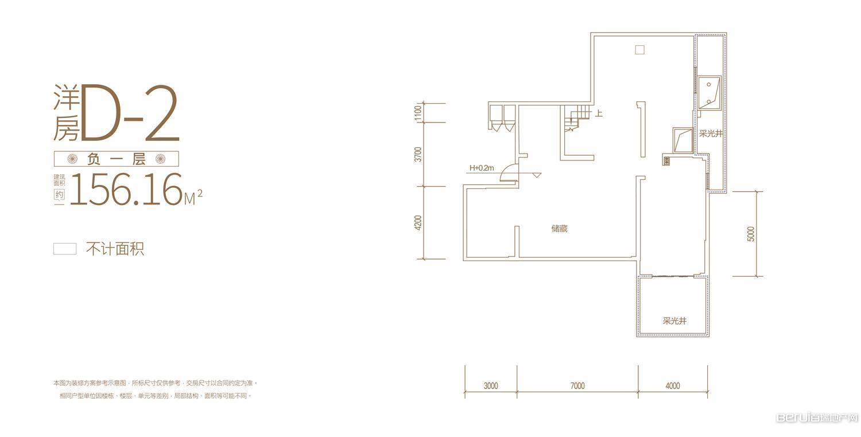 蓝光公园1号洋房D-2负一层户型图