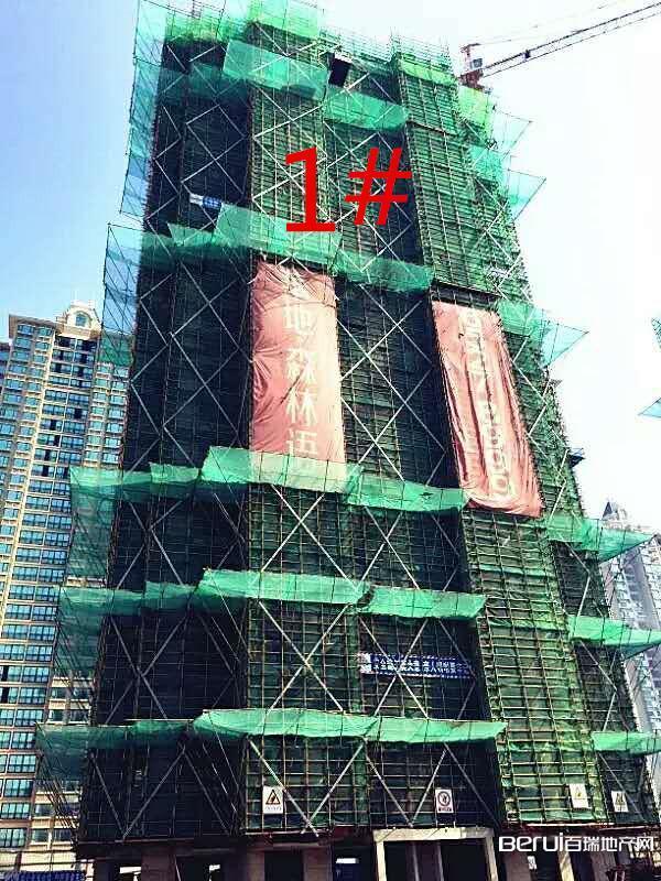 华地森林语8月工程进度:1#建至17层
