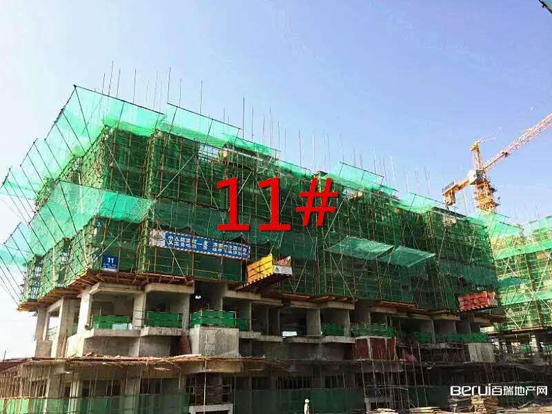 华地森林语8月工程进度:11#已建至5层