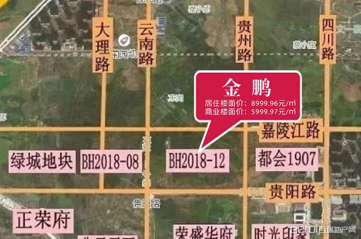 金鹏滨湖区BH2018-12地块