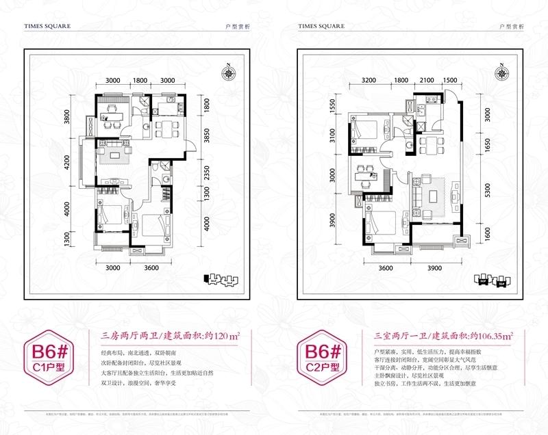 尚泽大都会B6#C1、C2