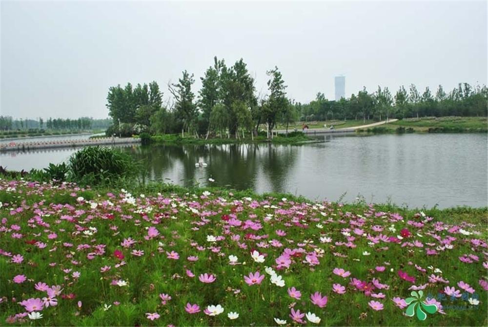 利港银河广场周边方兴湖公园