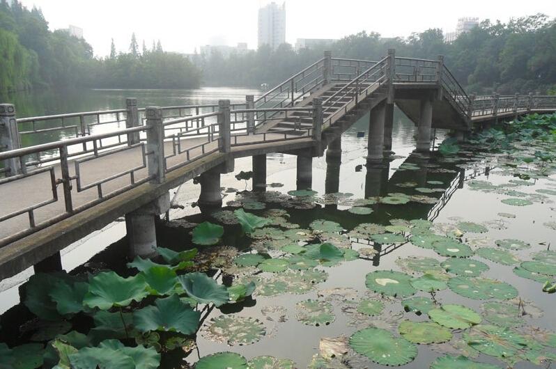 东方广场附近包河公园